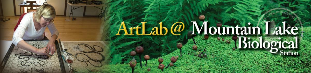 ArtLab @ Mountain Lake Biological Station